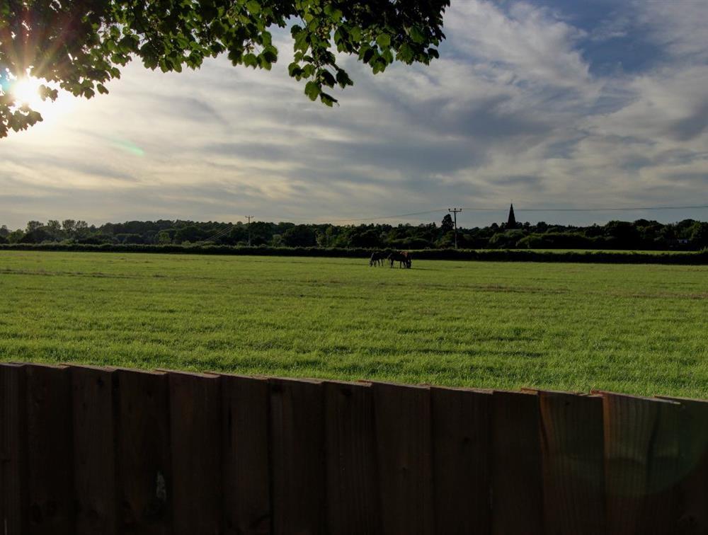 Far-reaching views to Sunninghill